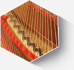 德国ROSLAU琴弦